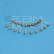 SOTTOCOSTO 10 pz fusibili ritardati 5A 250V - fusibile 6,3 x 32 mm
